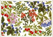 Tree Berry(トゥリーベリー)