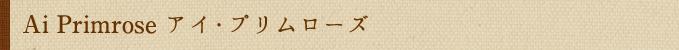 Ai Primrose アイ・プリムローズ