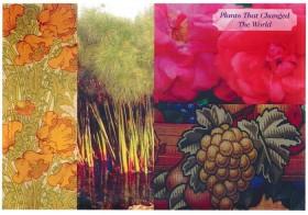 #04 世界を変えた植物 ーリバティプリント2014年秋冬柄