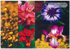 #05 象徴的意味を持つ草花 ーリバティプリント2014年秋冬柄